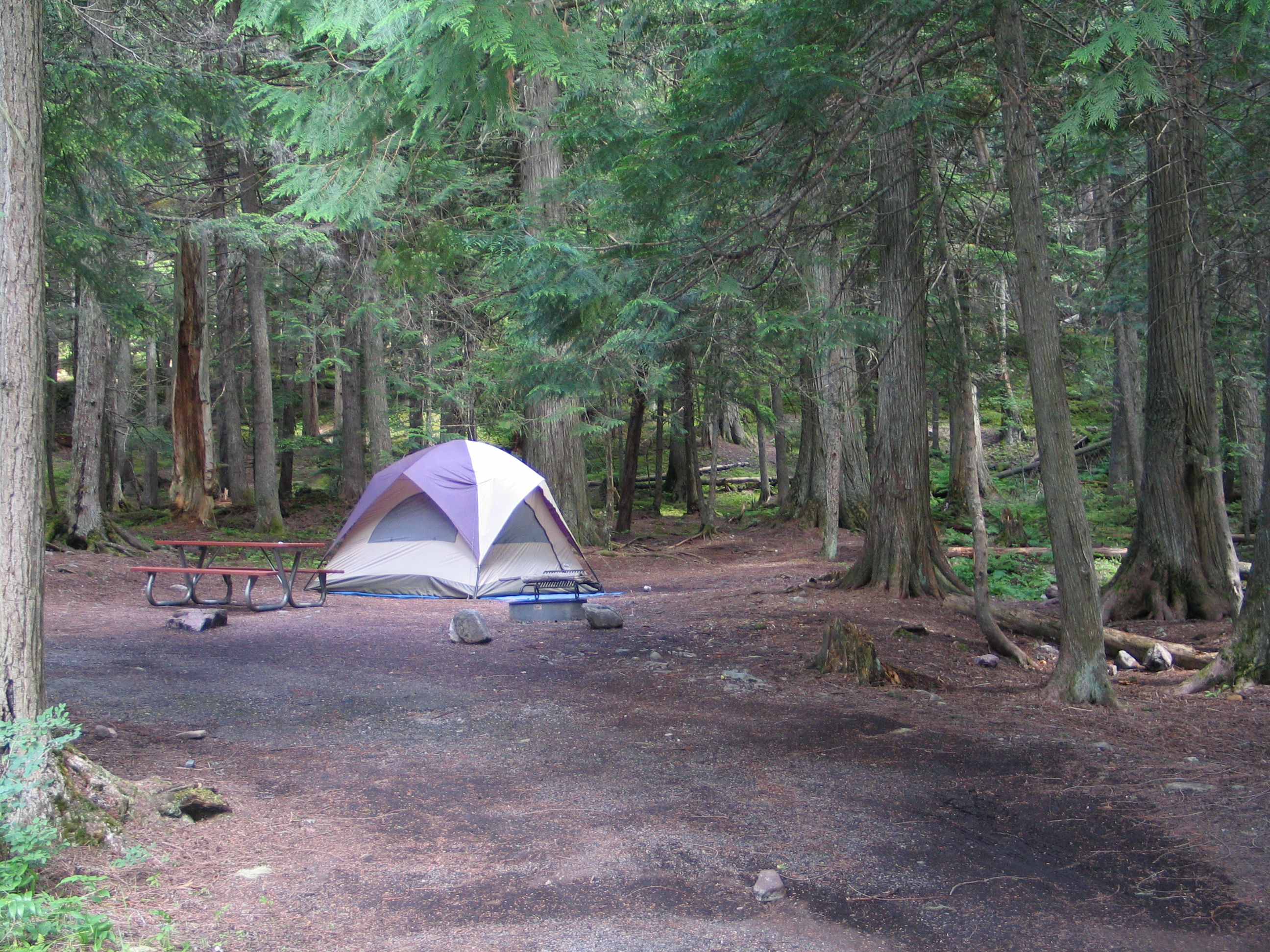 essay on camping trips