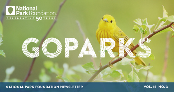national park foundation, go parks newsletter graphic over a image of a yellow warbler perched on a branch in Cuyahoga National Park