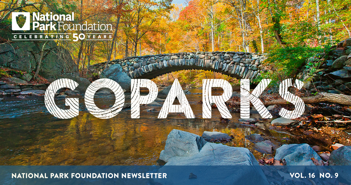 national park foundation, go parks newsletter graphic over image of Rock Creek Park, including rocks and water flowing under a stone bridge is a colorful forest of trees