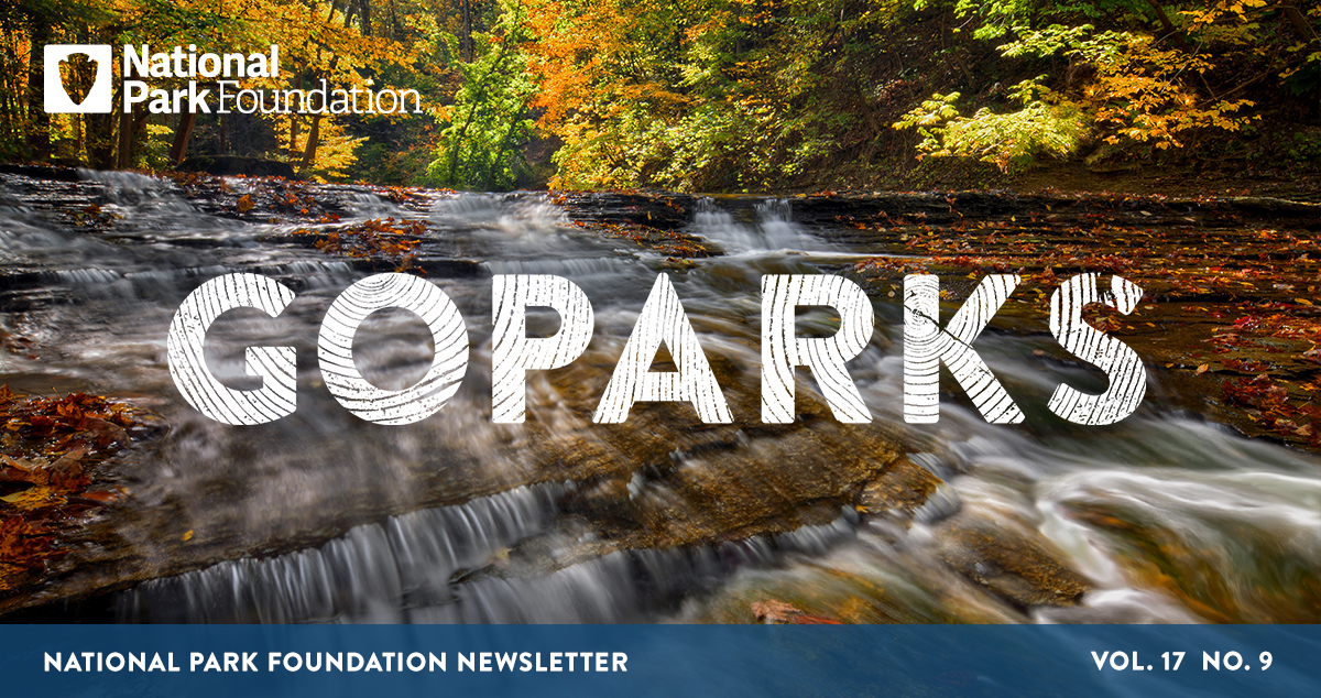 An image of the Cuyahoga River flowing down sloped rocks, creating mini waterfalls, with fall trees lining the edge