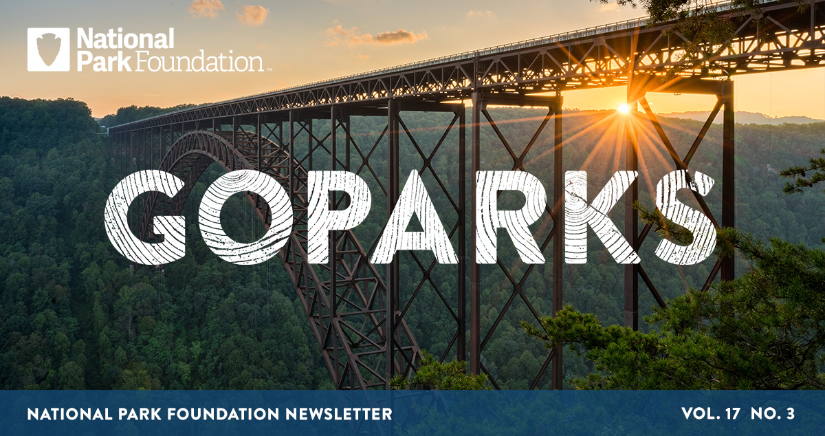 National Park Foundation, GoParks newsletter graphic cover image of an arch bridge over the lush grounds of New River Gorge