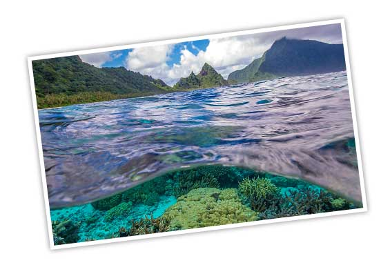 National Park of American Samoa, including grassy mountains and view of coral underwater