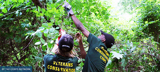 Two Veterans Conservation Corps members work outside trimming trees in the forest