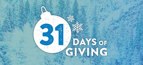 31 Days of Giving graphic with ornament on a background of evergreens