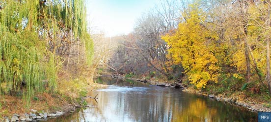 Line of yellow and green leaves on trees along the Musconetcong River in New Jersey
