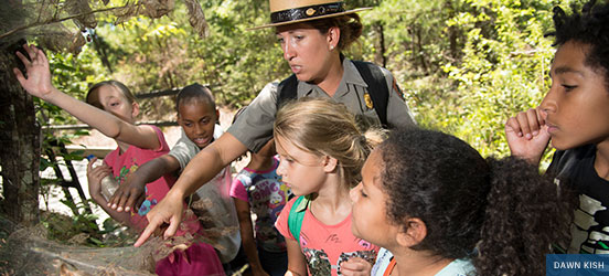 A female park ranger points to a spider web on a tree branch to show to a group of fourth graders