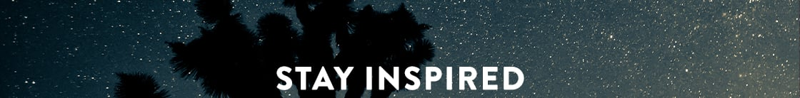 Stay Inspired banner