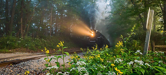 Steam engine running through trees at Cuyahoga Valley National Park