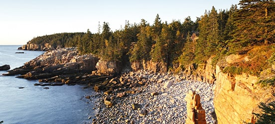 The rocky coast lined with cliffs and pine trees at Acadia National Park
