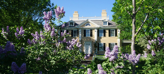 The Longfellow House, a large, cream colored mansion with black shutters, set behind purple flowering bushes