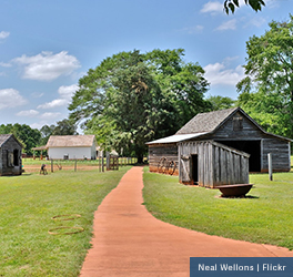 A few wooden barns are seen off of a dirt path on the lush land that is Jimmy Carter's childhood farm
