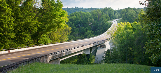 A view of the Natchez Trace Parkway Bridge which is surrounded by dense woods on both sides