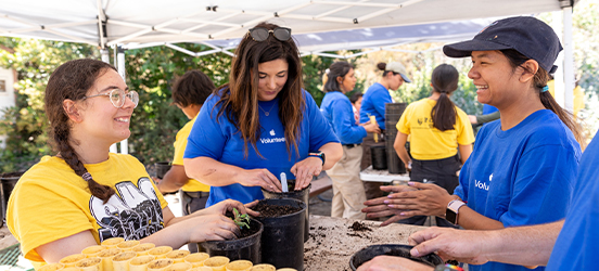 Apple employees volunteering by potting plants at a park