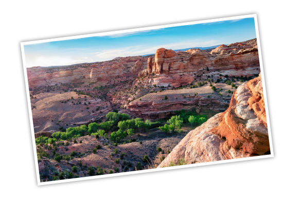 The image from the header that shows layered sandstone forming large canyons at Capitol Reef National Park