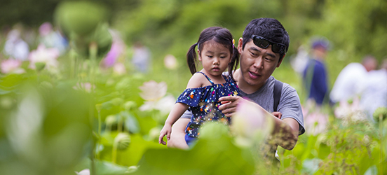 A dad holding his daughter, points out flowers among tall, lush plants at Kenilworth Park and Aquatic Gardens