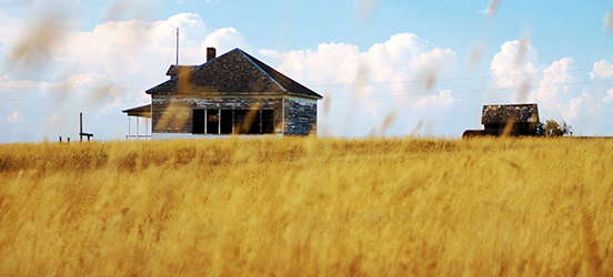 Two old, weather worn buildings on the horizon, sit in a golden wheat field