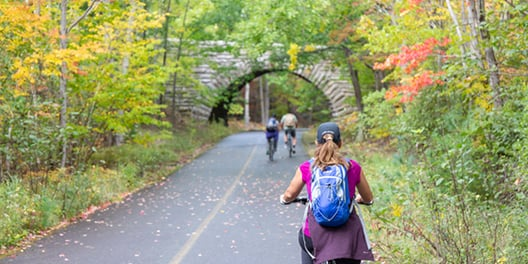 Three people bike along a path in Acadia National Park, fall trees line the trail and a small rock bridge crosses the path in the distance