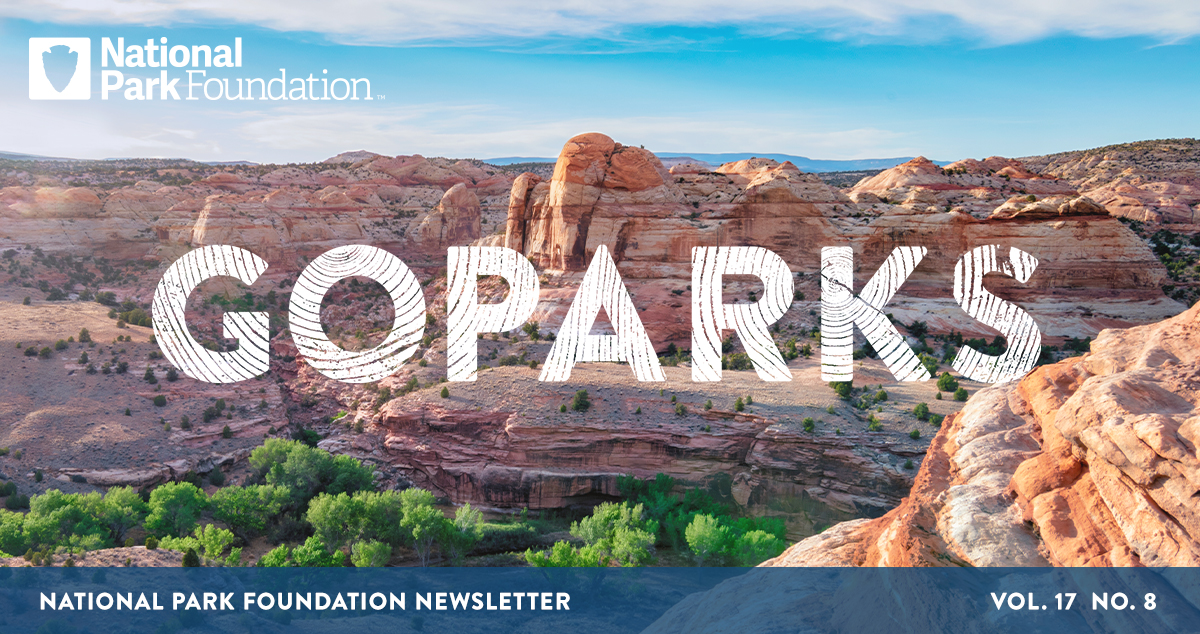 National Park Foundation, GoParks newsletter graphic cover image of layered sandstone forming large canyons at Capitol Reef National Park