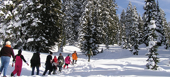 A class of kids walks with a ranger along a snowy trail in Mount Rainier National Park