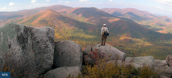 A man stands on top of a large rock, looking out at rolling hills covered in fall-turned trees at Shenandoah National Park