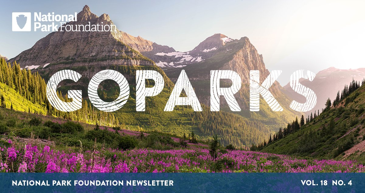 National Park Foundation, GoParks newsletter graphic cover image of wild purple flowers covering the foothills with mountains standing tall in the distance at Glacier National Park
