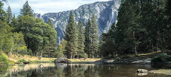 A small pond, lined with evergreen trees and grassy banks, with large mountains in background is a picturesque view in Yosemite National Park