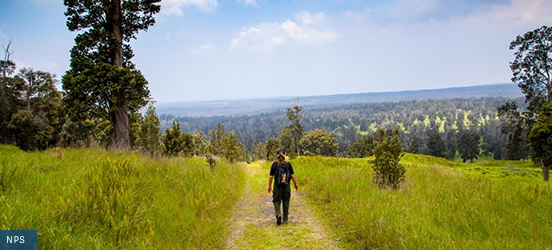 A person walks along a dirt trail with a field of grass on either side and tree covered hills in the distance