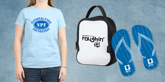 A collage of NPF merchandise, including a t-shirt, lunch bag, and sandals
