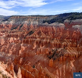 Red layered rock formations slope down, forming a natural amphitheater at Cedar Breaks National Monument