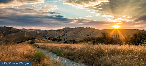 The rolling hills of the Santa Monica Mountains are illuminated by the setting sun on the pink horizon
