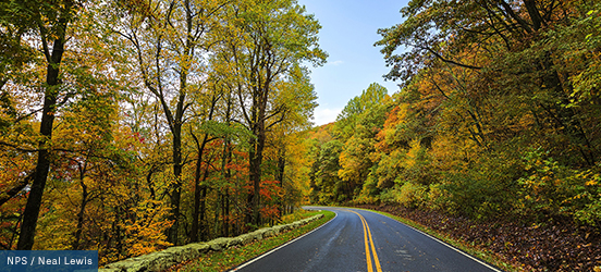 A road lined by a moss covered stone wall curves into the colorful, fall forest of Shenandoah National Park