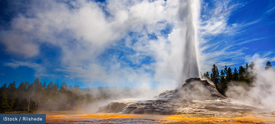 A geyser erupts in the middle of a yellow hot spring in Yellowstone National Park