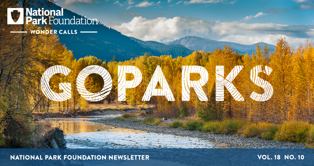 National Park Foundation, GoParks newsletter graphic cover image of a shallow stream weaving between yellow, autumn turned trees with the peaks of the North Cascades National Park behind them