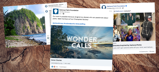 A collage of three snapshots of the social media posts from the National Park Foundation's various accounts set on a natural woodgrain background
