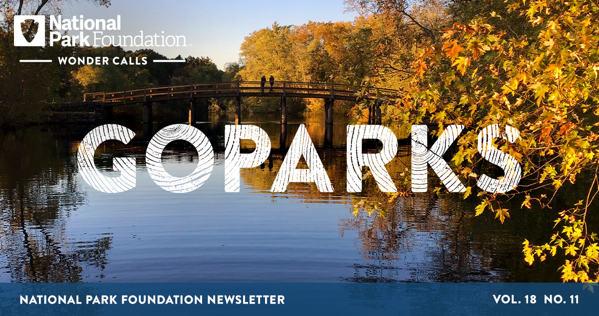 National Park Foundation, GoParks newsletter graphic cover image of yellow, autumn-turned trees lining the Concord Riverbed, the North Bridge arches across the horizon, with the silhouette of two people standing at the center