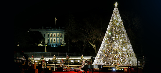 A nighttime view of the lit up National Christmas Tree, covered in small gold lights are a scattering of trios of larger star lights