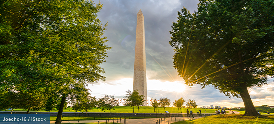 The Washington Monument stands tall on a slight hill with trees dotting the area around it