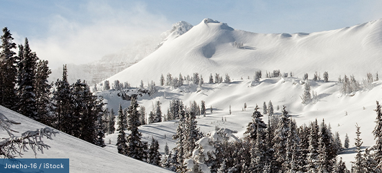 Snow covered mountains with evergreen trees poking through the snow drifts