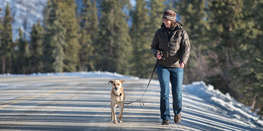 A woman walks her dog a long a snow-lined road with evergreen trees blurry in the background