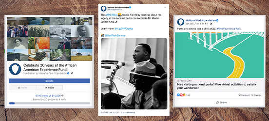 A collage of screenshots of the linked social media posts on a woodgrain background