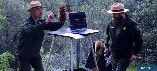 Two rangers engage with students via a webcam that they have set up on the trail, showing the students pinecones and other items from a large trunk at their feet in Sequoia & Kings Canyon National Parks