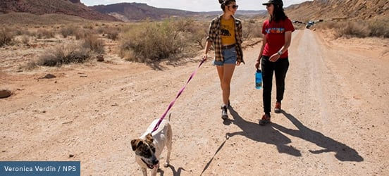 Two women walk along desert path with their dog on-leash, leading the way