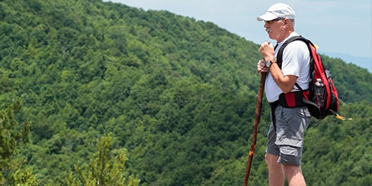 An older man stands on a mountain ridge with a hiking stick and pack on, and looks on at the tree covered mountains around him