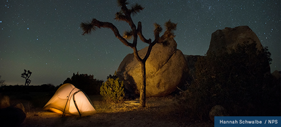 A night picture of an illuminated tent near massive boulders and desert brush in Joshua Tree National Park