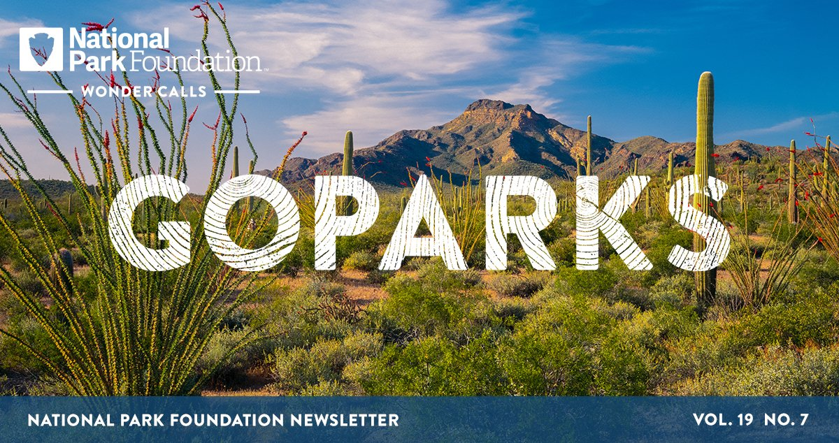 National Park Foundation, GoParks newsletter graphic cover image of tall cacti and desert brush covering the ground with a mountain in the distance in Organ Pipe National Monument