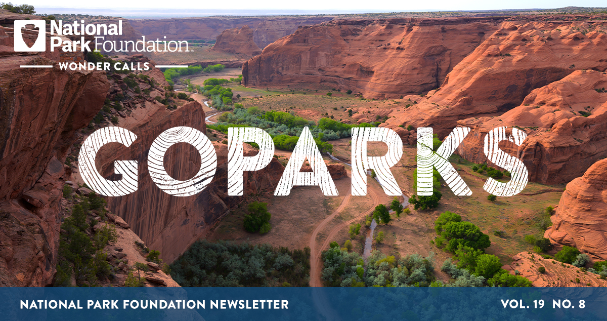 National Park Foundation, GoParks newsletter graphic cover image of a look into Canyon de Chelly National Monument with red rock forming a deep, but wide canyon as far as the eye can see and bright green trees dotting the canyon floor, outlining the flowing river, snaking its way to the horizon