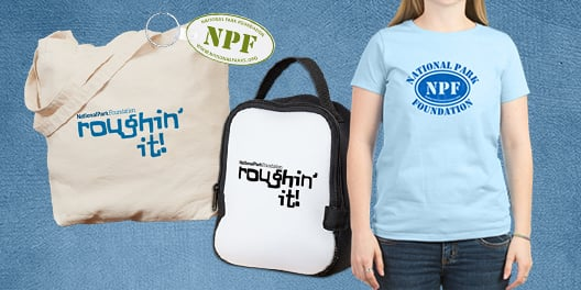 A collage of NPF merchandise, including a tote bag, a lunch bag, a keychain, and a t-shirt