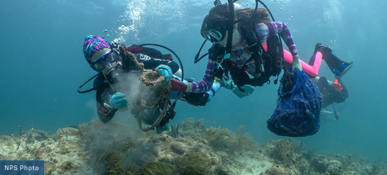 Two scuba divers examine something from the sea floor while underwater