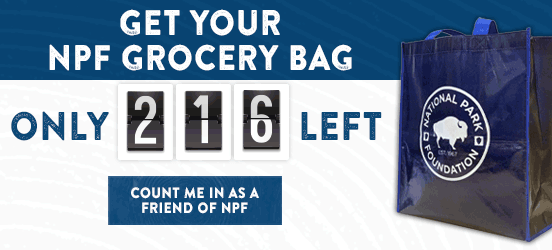 A countdown ticker next to the NPF grocery bag gifted to new Friends of NPF and existing friends who increase their monthly gift