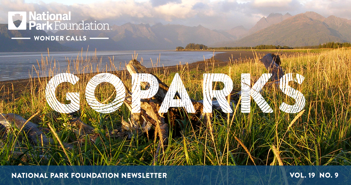 National Park Foundation, GoParks newsletter graphic cover image of driftwood sits camouflaged in tall grasses along the shore of Lake Clark National Park and Preserve with hazy mountains lining the horizon